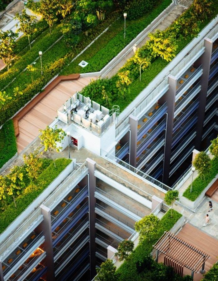 Les toitures végétalisées : note technique et benchmark